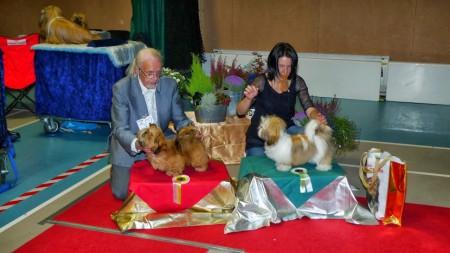 TibethundValp4-6